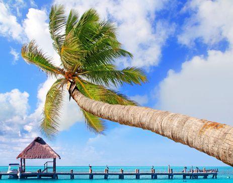 Vuelos a Cancún